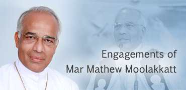 Engagements-Mar-Mathew-Moolakkatt-Widget